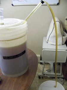Transferring beer into bottling bucket